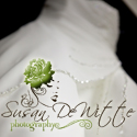 Susan DeWitte Photography